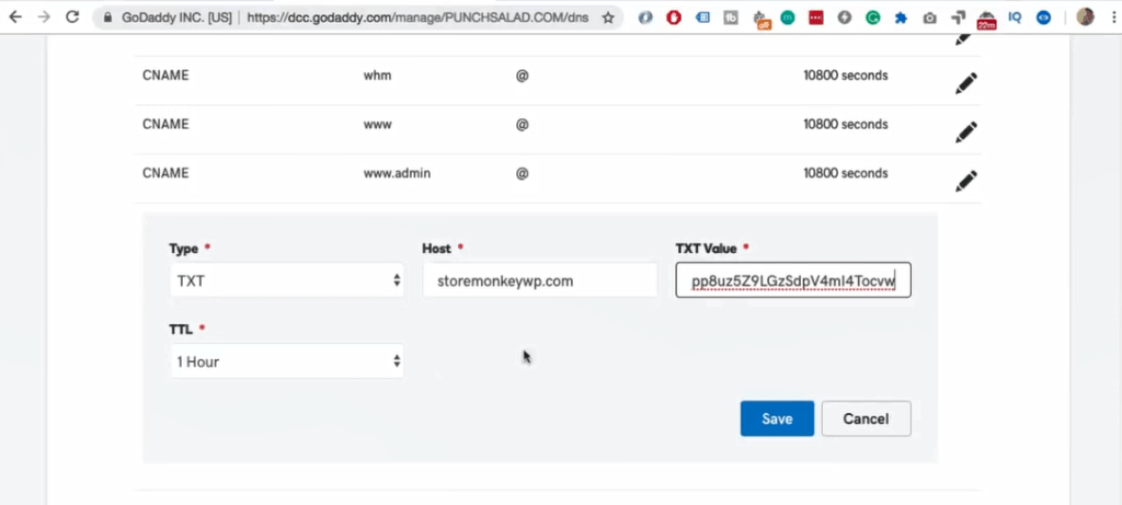txt value field paste the verification code